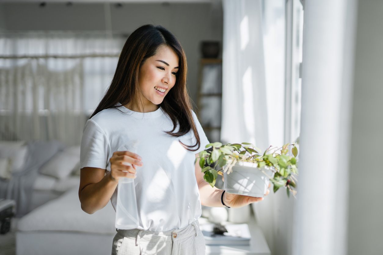 A woman tending to her houseplant from a Jessup nursery